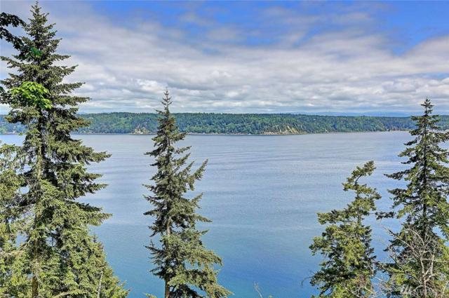 3447 S East Camano Dr, Camano Island, WA 98282 (#1298571) :: Better Homes and Gardens Real Estate McKenzie Group