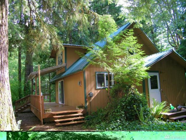 64120 E Cascade Dr, Marblemount, WA 98267 (#1298671) :: Keller Williams Western Realty