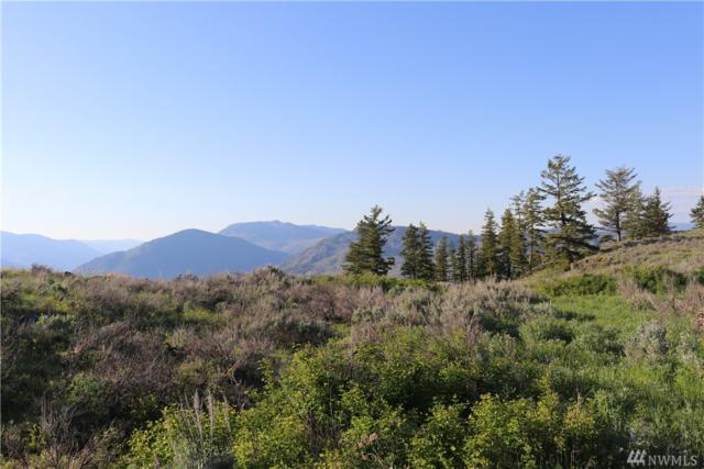 0-TBD Ellemeham Mtn. Rd., Oroville, WA 98844 (#1298818) :: Icon Real Estate Group