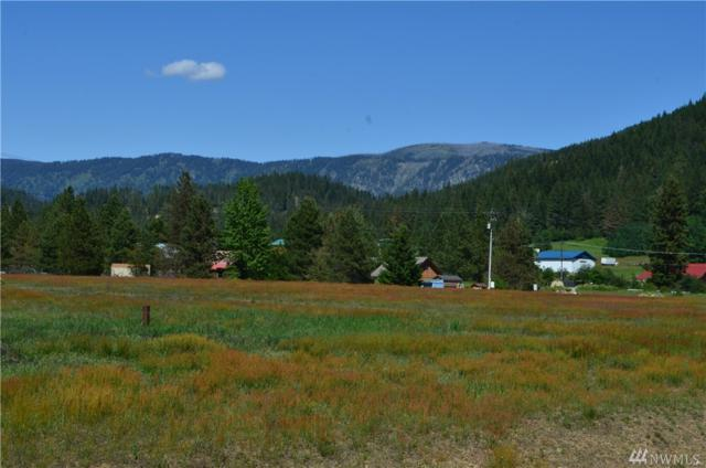 12360 Plain Ranches Rd, Leavenworth, WA 98826 (#1298832) :: Ben Kinney Real Estate Team