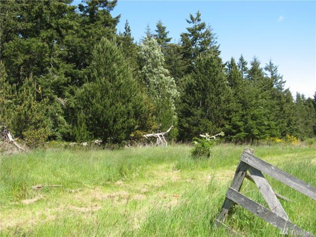 142 Aerie Place, Lopez Island, WA 98261 (#1298915) :: Homes on the Sound