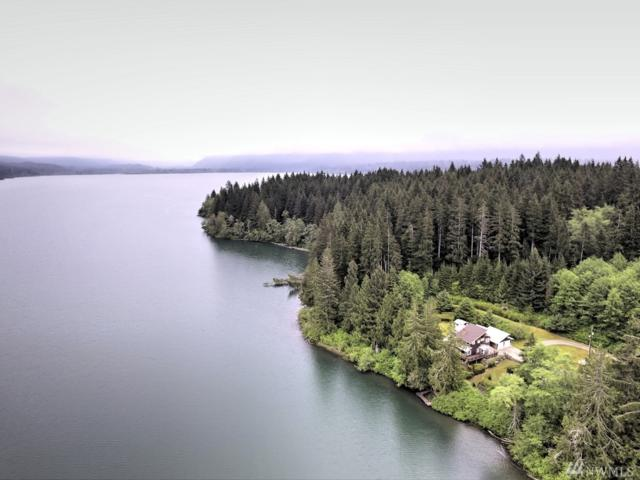 6134 Us Highway 101, Amanda Park, WA 98526 (#1298917) :: Homes on the Sound