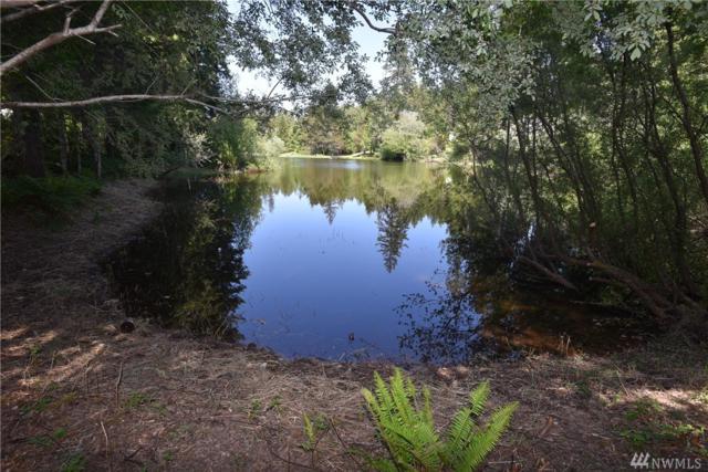 327 E Emerald Lake Dr W, Grapeview, WA 98546 (#1299052) :: Homes on the Sound