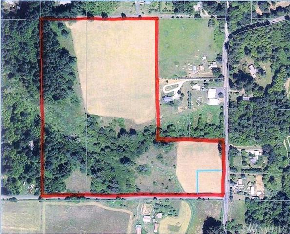 0 NE 389th St, Amboy, WA 98601 (#1299255) :: Homes on the Sound