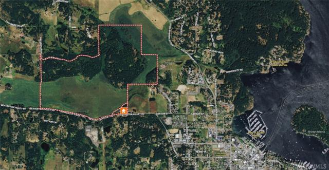 0-XX Beaverton Valley Road, Friday Harbor, WA 98250 (#1299277) :: Icon Real Estate Group