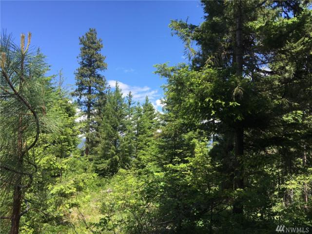 0-Lot 2 Alice Rd, Cle Elum, WA 98922 (#1299511) :: NW Home Experts