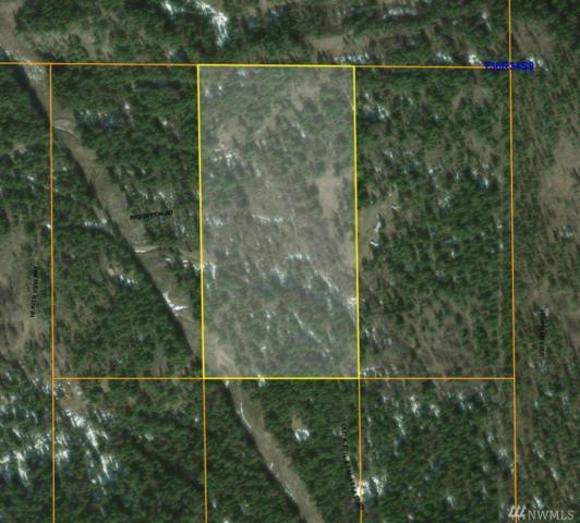 9999 Arbor View Rd, Republic, WA 99166 (#1299706) :: Icon Real Estate Group
