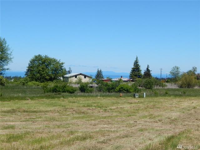 9999 Fern Rd, Port Angeles, WA 98362 (#1300019) :: Icon Real Estate Group