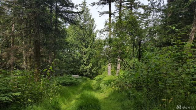 0-Lot 19 Obstruction Pass Rd, Orcas Island, WA 98279 (#1300042) :: The Vija Group - Keller Williams Realty