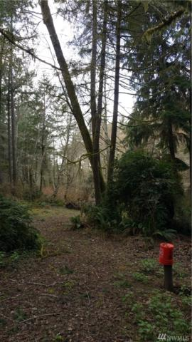 12801 Lovass Rd Ai, Anderson Island, WA 98303 (#1300084) :: Crutcher Dennis - My Puget Sound Homes