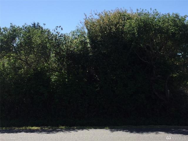 863 Minard Ave, Ocean Shores, WA 98569 (#1300204) :: Morris Real Estate Group