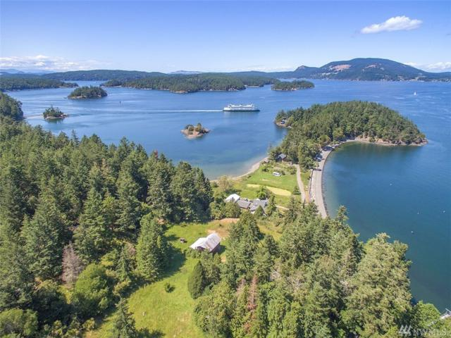 407 Broken Point Rd, Shaw Island, WA 98286 (#1300332) :: Real Estate Solutions Group