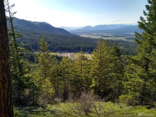 0 Skull Springs Rd Cle Elum, Cle Elum, WA 98922 (#1300859) :: Mike & Sandi Nelson Real Estate