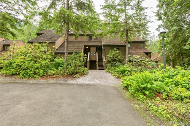 10500 Mount Baker Hwy #503, Glacier, WA 98244 (#1301022) :: Real Estate Solutions Group