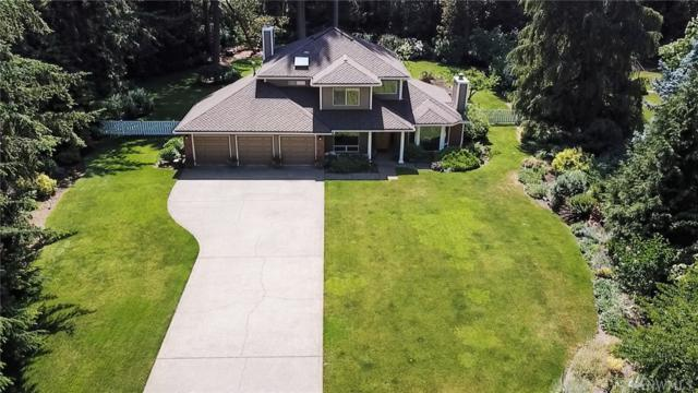 4824 100th Av Ct NW, Gig Harbor, WA 98335 (#1302388) :: Real Estate Solutions Group