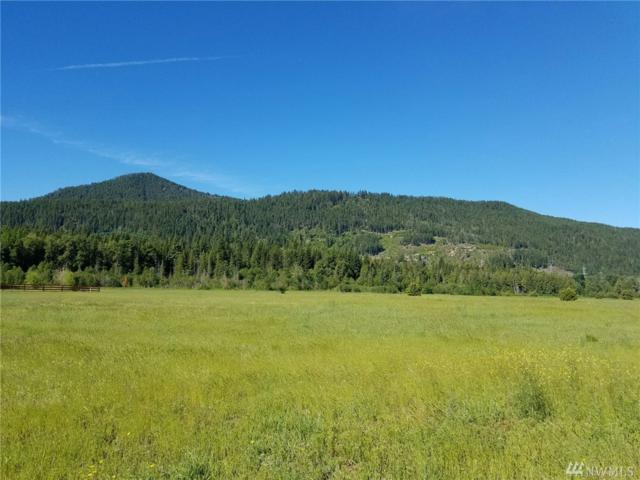 0 Old Cedars Rd, Cle Elum, WA 98922 (#1302512) :: Real Estate Solutions Group