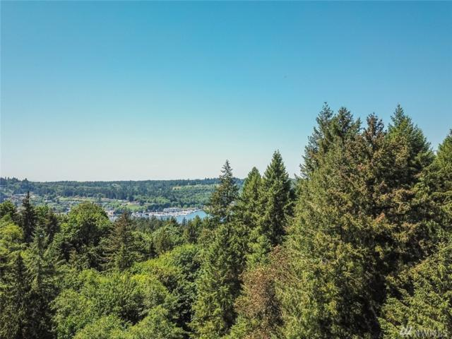 9102 27th Av Ct NW, Gig Harbor, WA 98332 (#1302742) :: Ben Kinney Real Estate Team