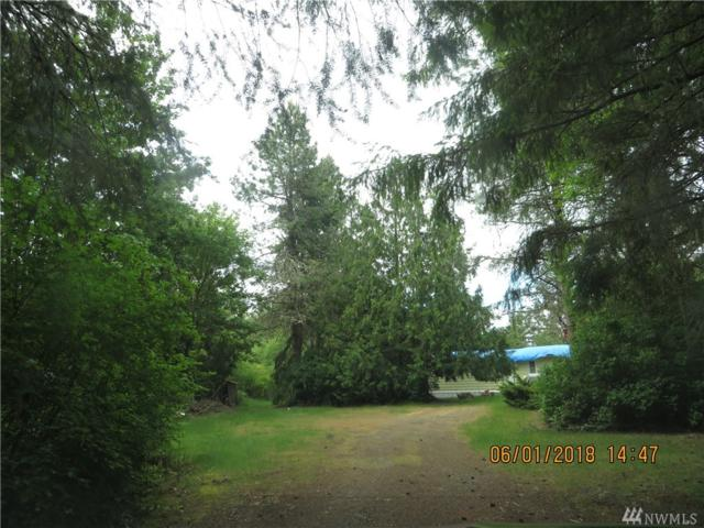 4804 Offut Lake Rd SE, Tenino, WA 98589 (#1302743) :: Costello Team