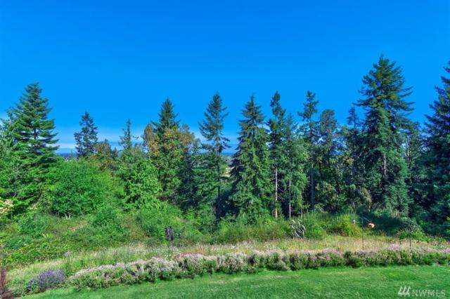 360 Fox Hollow Rd, Sequim, WA 98382 (#1303056) :: Real Estate Solutions Group