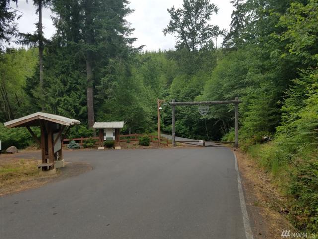 626 Lookout Rd, Castle Rock, WA 98611 (#1303377) :: Crutcher Dennis - My Puget Sound Homes