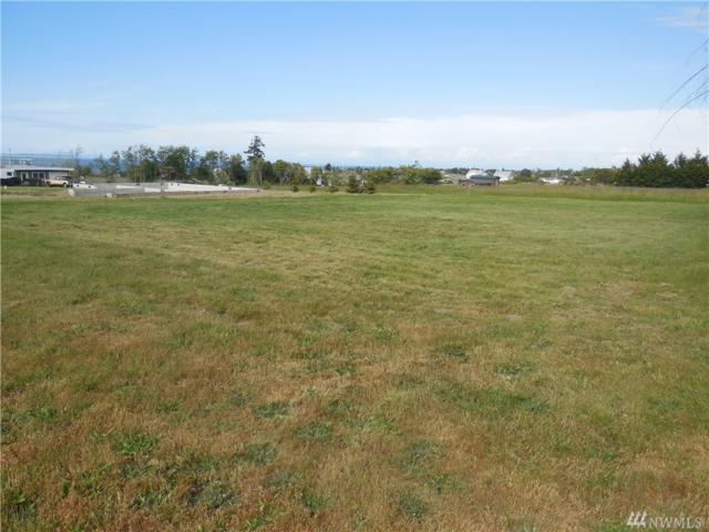 9999999 Olympic  View, Sequim, WA 98382 (#1303485) :: Homes on the Sound