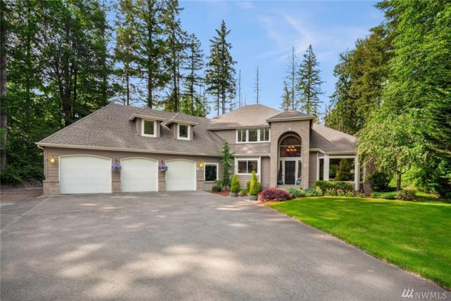 17047 234th Wy SE, Maple Valley, WA 98038 (#1303637) :: The DiBello Real Estate Group
