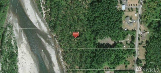 239 Toutle Ridge Dr, Toutle, WA 98649 (#1303822) :: Icon Real Estate Group
