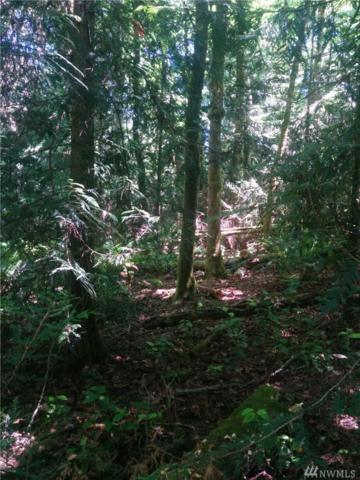 0 Harper Hill Road, Port Orchard, WA 98366 (#1304011) :: Homes on the Sound