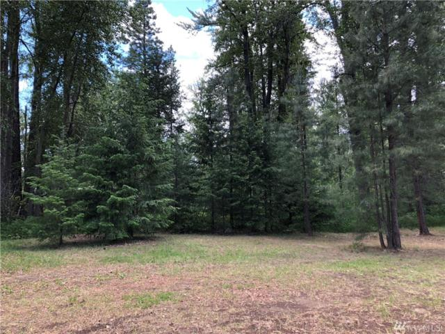 0-Lot 2 Edelweiss Plat No 1, Winthrop, WA 98862 (#1304149) :: Real Estate Solutions Group