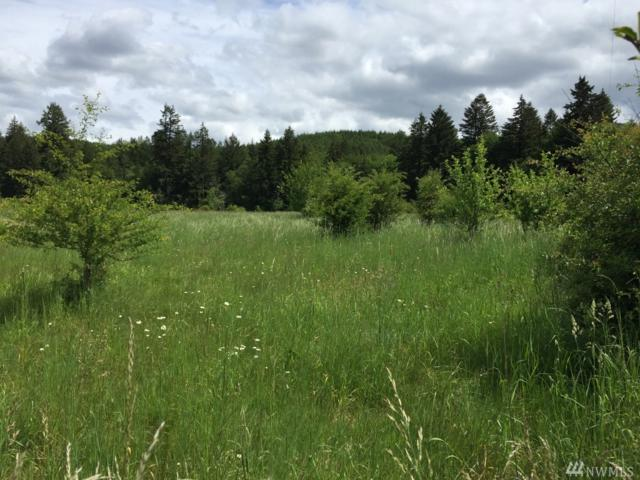 0 State Route 506, Vader, WA 98611 (#1304428) :: Real Estate Solutions Group