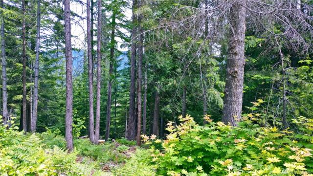 0-Lot 1 Nelson Siding Rd, Cle Elum, WA 98922 (#1304455) :: Real Estate Solutions Group
