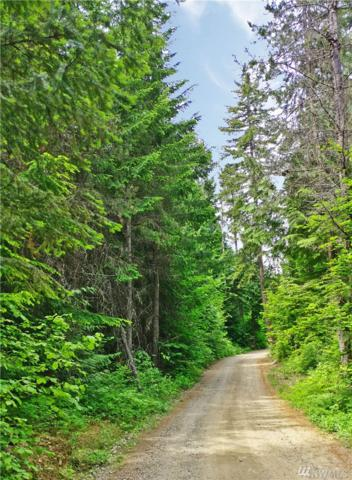 0-Lot 2 Nelson Siding Rd, Cle Elum, WA 98922 (#1304543) :: Real Estate Solutions Group