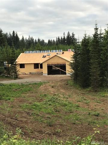 130 Salkum Rd, Salkum, WA 98582 (#1304741) :: Better Homes and Gardens Real Estate McKenzie Group
