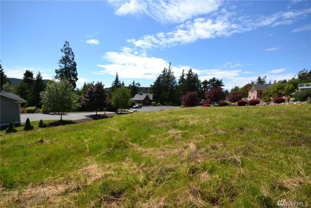 3007 Meridian Ct, Anacortes, WA 98221 (#1304863) :: Real Estate Solutions Group