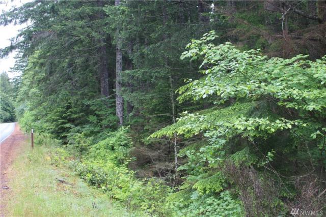 0 Hwy 119, Hoodsport, WA 98548 (#1305491) :: Crutcher Dennis - My Puget Sound Homes