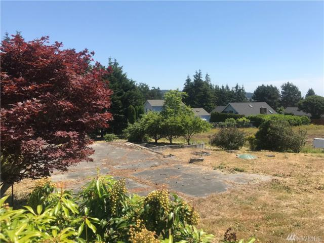 5625 Melendy Dr, Langley, WA 98260 (#1305585) :: Homes on the Sound