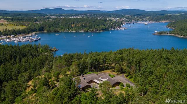 67 Roulac Lane, Friday Harbor, WA 98250 (#1305841) :: Real Estate Solutions Group
