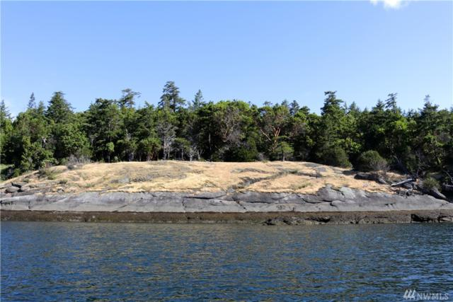 2 Mail Bay Estates, Waldron Island, WA 98250 (#1306010) :: Real Estate Solutions Group