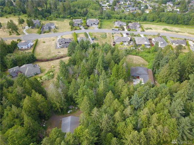 2072 Johnson Rd, Point Roberts, WA 98281 (#1306440) :: Real Estate Solutions Group
