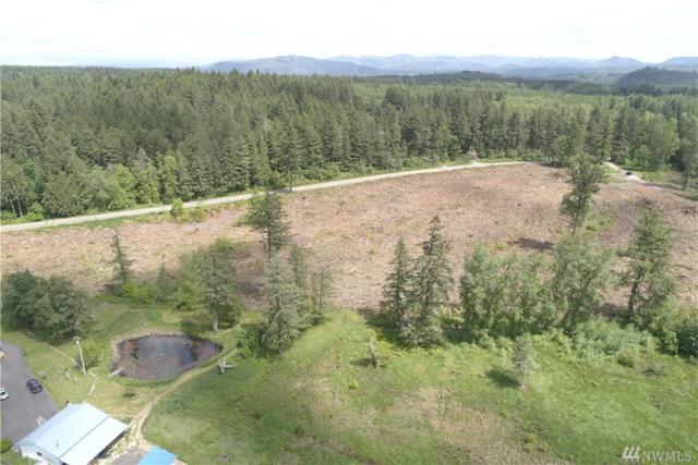 41020 Mt Hwy E, Eatonville, WA 98328 (#1306460) :: Chris Cross Real Estate Group