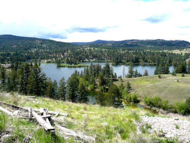 0-Lot A Sandpiper Way, Republic, WA 99166 (#1307180) :: Homes on the Sound