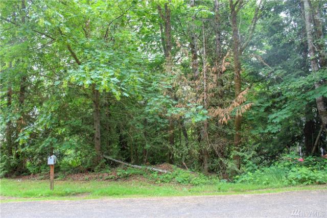 171 E Ashwood Lane, Shelton, WA 98584 (#1307314) :: Keller Williams Realty