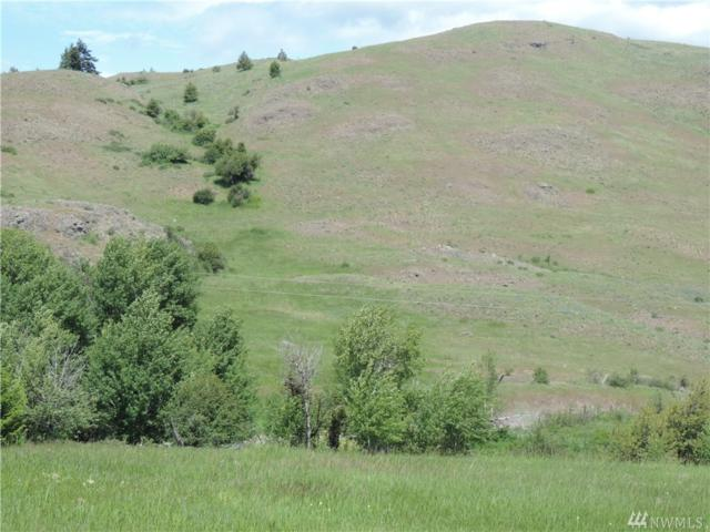 1500-Lot C1 Chesaw Rd, Oroville, WA 98844 (#1307455) :: Homes on the Sound