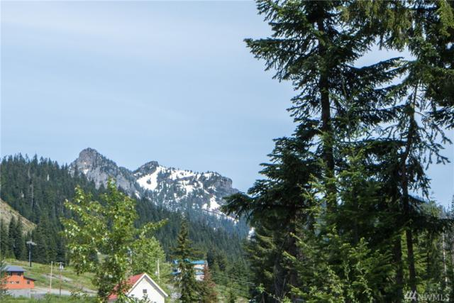 4-XX Tanner Wy, Snoqualmie Pass, WA 98068 (#1307629) :: Icon Real Estate Group