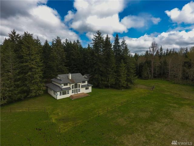 395 Texas Valley Rd, Sequim, WA 98382 (#1307642) :: Real Estate Solutions Group