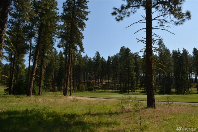 1630 Coal Mine Wy, Cle Elum, WA 98922 (#1307659) :: Real Estate Solutions Group