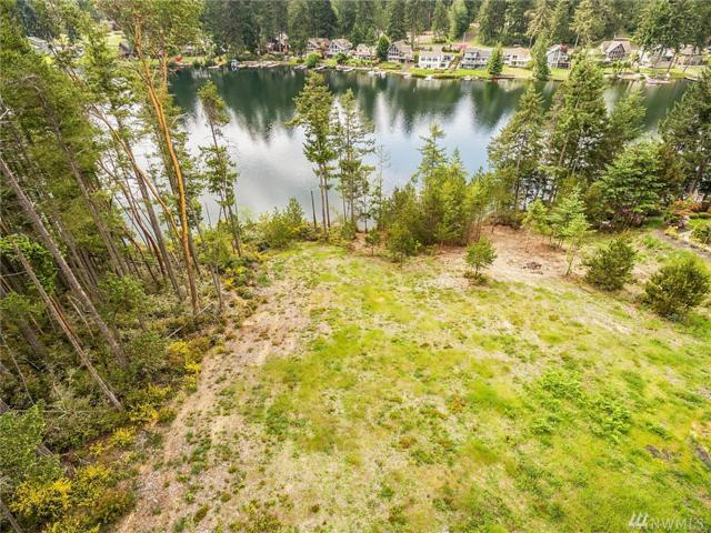 9709 117th Ave, Anderson Island, WA 98303 (#1307870) :: Crutcher Dennis - My Puget Sound Homes