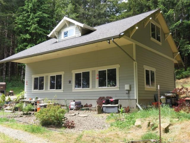 4601 State Route 101, Naselle, WA 98638 (#1308121) :: Hauer Home Team