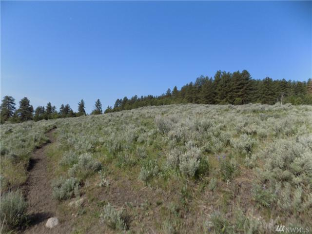 1111 Tbd High Country Dr, Tonasket, WA 98855 (#1308153) :: Alchemy Real Estate