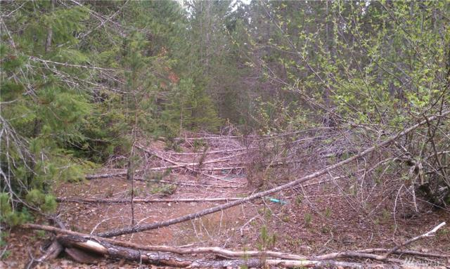 0-Lot A NE Shoe Lake Rd, Tahuya, WA 98588 (MLS #1308170) :: Lucido Global Portland Vancouver